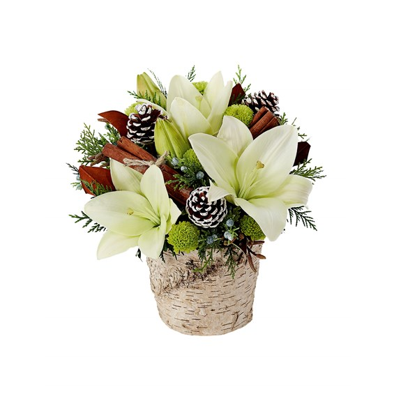 Winter Forest Splendor flower arrangements (BF372-11KM)